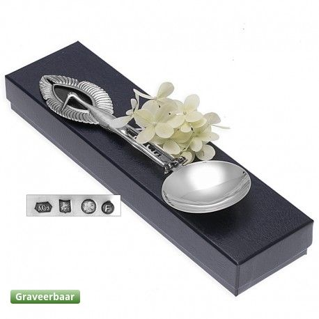 Een zilveren lepel, ter gelegenheid van….?