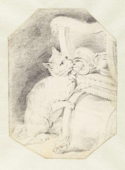 Antiek prent kat die aan kaarsvet likt Blog Zilver.nl